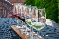 酒杯为品尝排队了在庭院里在地方葡萄园 免版税库存照片