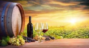 酒杯和瓶有桶的在葡萄园里 免版税库存照片