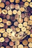 酒杯和黄柏细节在被过滤的老葡萄酒样式 免版税图库摄影