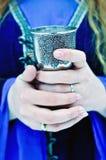 酒杯在妇女的手上在冬天 库存照片