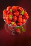 酒杯草莓 免版税库存照片