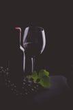 酒概念 免版税库存照片