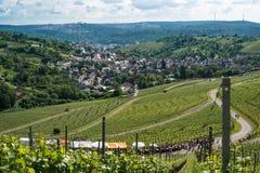 酒游览在斯图加特,德国附近的Uhlbach 免版税库存图片