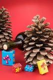 酒瓶、pincone和五颜六色的圣诞节礼物盒 免版税库存图片