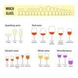 酒的平的不同的玻璃 库存照片