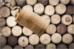 酒的瓶接近的黄柏开启者 库存照片