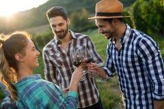 酒种植者和人在葡萄园里 库存图片