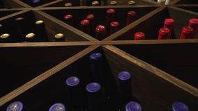 酒穹顶 葡萄酒酿造 葡萄酒酿造 影视素材