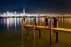 酒精在新西兰 免版税库存照片