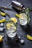 酒精饮料杜松子酒补剂鸡尾酒用柠檬、迷迭香和冰在石桌上 免版税库存图片
