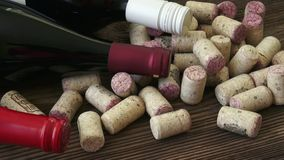 酒黄柏特写镜头  从瓶的黄柏红葡萄酒 许多不同的酒黄柏 股票视频
