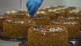 酥皮点心工厂的一名糖果商忙于装饰新鲜和可口蛋糕 蛋糕装饰 做蛋糕在工作 股票录像