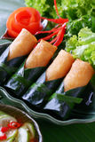 酥脆中国传统春卷食物 图库摄影