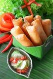 酥脆中国传统春卷食物 免版税图库摄影
