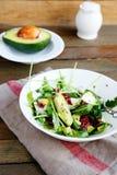 酥脆沙拉用新鲜的鲕梨 库存照片