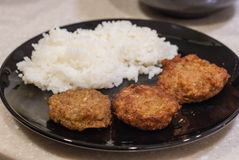 酥脆油煎的猪肉用米 免版税图库摄影