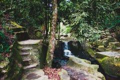 酸值的苏梅岛不可思议的庭院 免版税库存图片