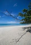 酸值苏梅岛海岛 库存照片