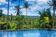 酸值苏梅岛热带森林和水池依靠 免版税库存照片