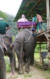 酸值苏梅岛,泰国- 2013年10月23日:游人在迁徙的大象去 免版税库存图片