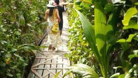 酸值阁帕岸岛,泰国- 21 Th 2018年8月:在热带灌木之间的年轻人对海滩 后面观点的男人和妇女 股票录像