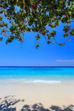 酸值4, Similan海岛国家公园,攀牙府,南泰国 白色海滩,美丽的水 免版税图库摄影