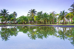 酸值Kho Khao热带密林在池塘反射了 库存照片