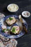 酸奶干酪和庭院萝卜三明治 库存图片