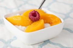 酸奶干酪有桃子侧视图 图库摄影