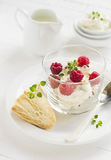 酸奶干酪用莓和吹 免版税库存照片