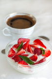 酸奶干酪用酸奶和草莓 图库摄影