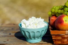 酸奶干酪的关闭和在麦田背景的第一个水果篮 七七节庆祝,收获节日 免版税库存照片