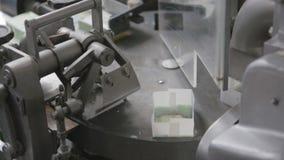 酸奶干酪的生产在日志工厂的 股票录像