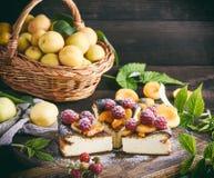 酸奶干酪饼片断用草莓和杏子 免版税图库摄影