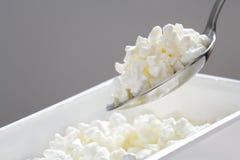 酸奶干酪 免版税图库摄影