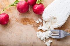 酸奶干酪 库存照片