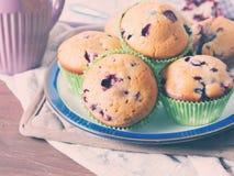 酸奶松饼用莓果早餐 库存图片