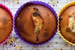 酸奶松饼用葡萄干 图库摄影
