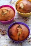 酸奶松饼用葡萄干 免版税库存照片