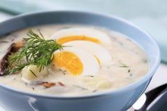 酸奶油色的汤 免版税库存照片