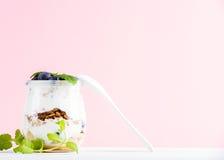 酸奶燕麦格兰诺拉麦片用果酱、蓝莓和绿色在玻璃瓶子离开在桃红色淡色背景 免版税库存图片
