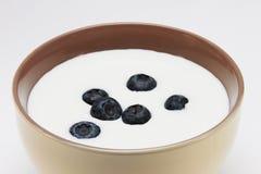 酸奶用莓果 免版税库存照片