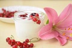 酸奶 免版税图库摄影