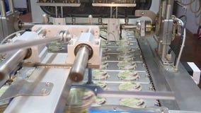 酸性稀奶油制造  影视素材