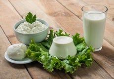 酸性稀奶油,牛奶,乳酪,无盐干酪,乳清干酪 库存照片
