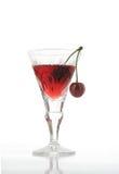 酸樱桃的鸡尾酒 库存图片