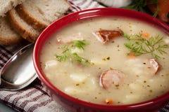 酸汤由黑麦面粉制成 库存图片