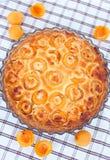酸的杏子,顶视图 免版税库存照片