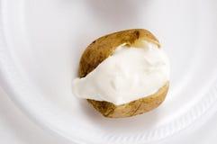 酸被烘烤的奶油色的土豆 库存照片