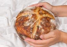 酸面团面包新鲜的被烘烤的大面包 免版税库存照片